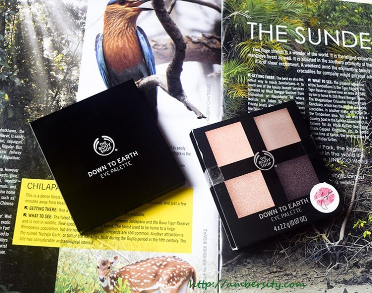 The Body Shop Down To Earth Eyeshadow Quad Brown – Review, Swatches